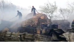 Read more: VIDEO. Focul a făcut prăpăd! Au ars de vii 24 de porci