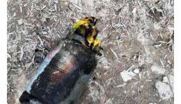 Read more: Bătrână de 80 de ani, moartă, în urma exploziei unei butelii