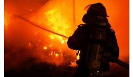 Read more: Azi-noapte, în Pitești,  a luat foc o seră de flori