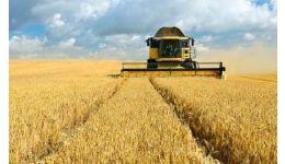 Read more: PSD Argeș: Fiecare zi a guvernării PNL adâncește riscul insecurității alimentare a țării!