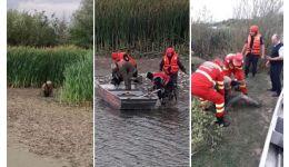 Read more: VIDEO. Om al străzii salvat de pompierii vâlceni. Era afundat până la brâu în nămolul de pe marginea Oltului