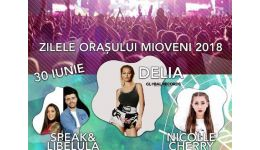 Read more: Programul Zilelor Orașului Mioveni