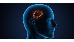 Read more: Despre o Nefericire sănătoasă și rumenă în obraji
