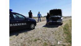 Read more: Foamea, în Argeș ! Furau oi și iezi cu autoturismul