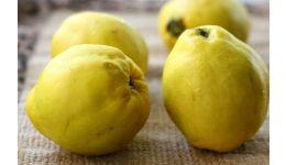 Read more: Gutuia – fructul ideal pentru frumusețe și sănătate