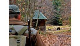 Read more: Ursul şi vânătorul, o poveste cu iz constituţional