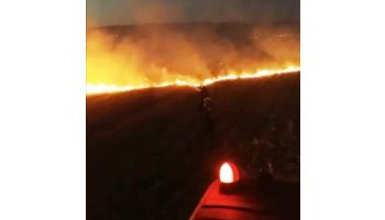 f_350_200_16777215_00_images__2017_04aprilie_Incendiu-vegetatie-noaptea.jpg